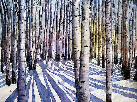 Winter Shadows by Shirley Braithwaite Hunt