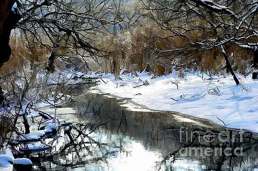 Winter Stream  by Elaine Manley