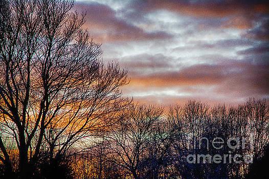 Winter Sunset  by JW Hanley