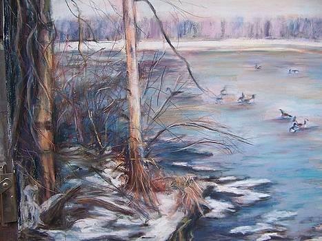 Winter Swamp by Joan Wulff