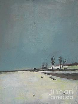 Winter at the Prairie by Vesna Antic
