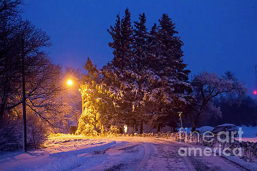 Winter Wonderland by Francis Lavigne-Theriault