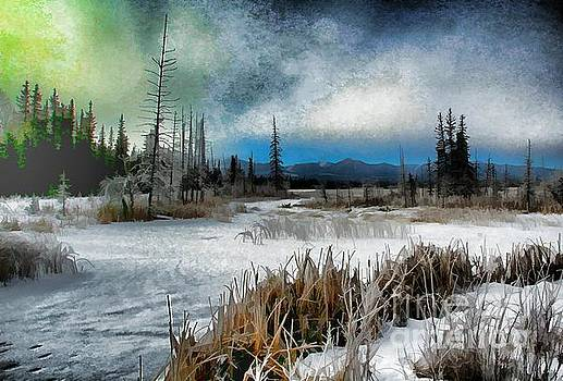 Roland Stanke - Winters marsh