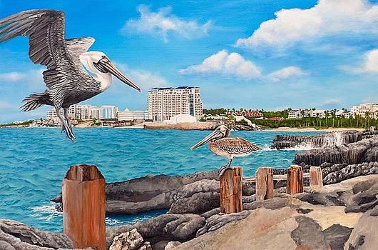 WIP- Pelican 06 by Cindy D Chinn