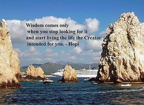 Gary Wonning - Wisdom