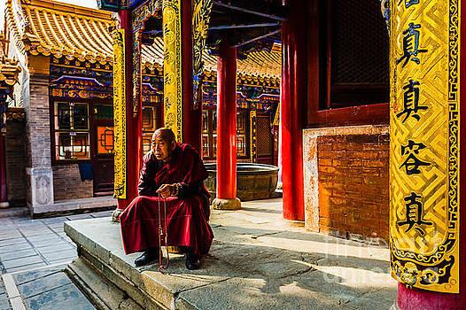 Wisdom monk by Adrian Baljeu