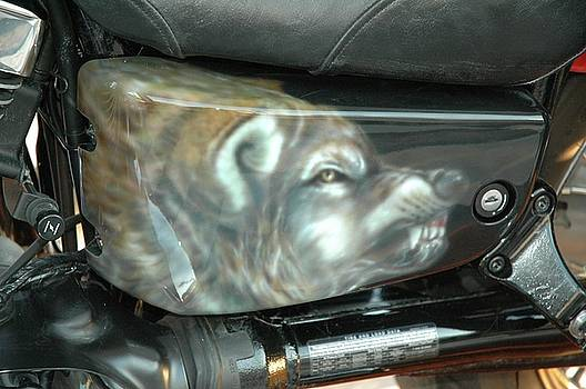 Wolf Motorcycle Side Panel by Wayne Pruse
