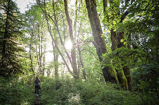 Woman hiking along an Oregon forest trail at sunset by Bradley Hebdon