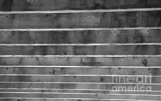 Elaine Mikkelstrup - Wood Abstract