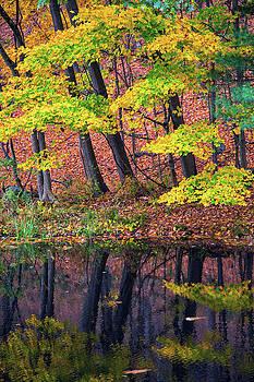 Karol Livote - Yellow Autumn