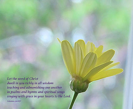 Yellow Daisy with Bible Verse by Lynn Harrison