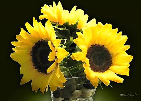 Milena Ilieva - Yellow Flowers