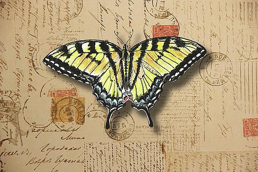 Yellow Swallowtail Butterfly by Masha Batkova