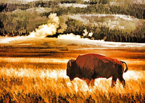 Dennis Cox - Yellowstone Bison