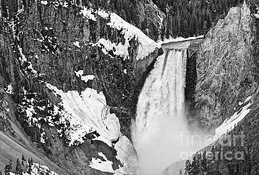 Jamie Pham - Yellowstone Falls from Lookout Point.