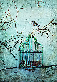 Hummingbird and Cage by Eleanor Caputo