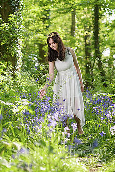 Young Woman In Bluebell Woodland by Amanda Elwell