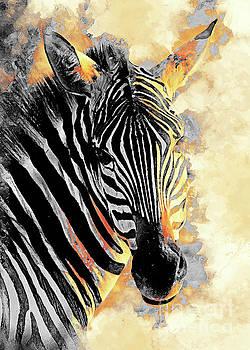 Zebra Art by Justyna JBJart