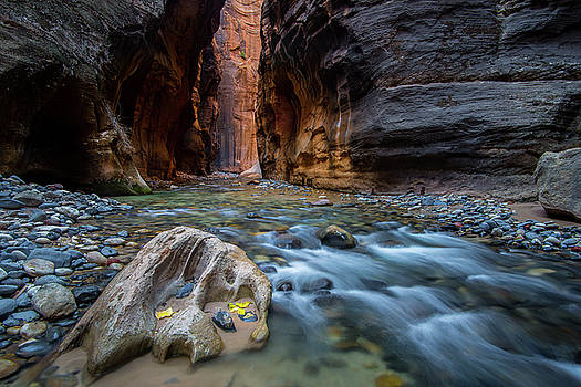 Zion Narrows by Wesley Aston
