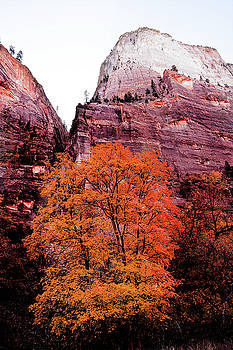 Zion National park by Norman Hall