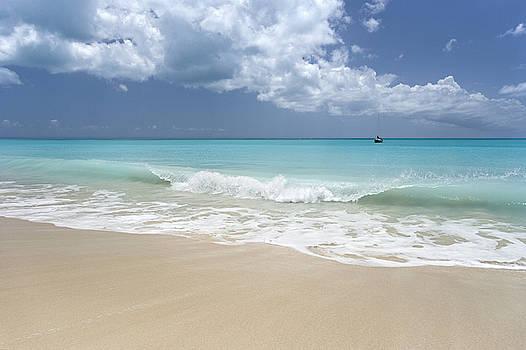 11 Mile Beach Barbuda by Bryan Allen