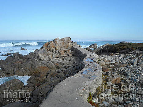 Pacific Grove by Marte Thompson