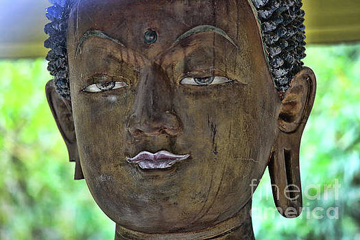 Chuck Kuhn - 1101 Buddha Built Face