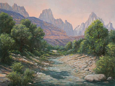 110124-1216   Bryce Canyon Run-Off by Kenneth Shanika