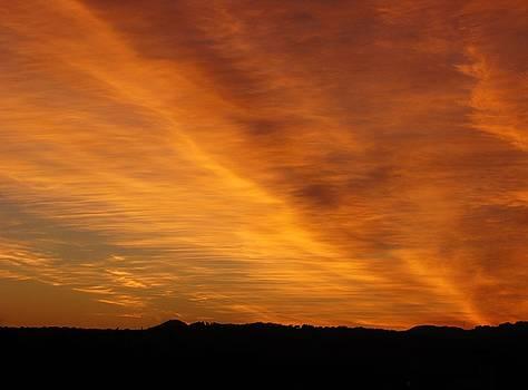 1119152 Sunset by Carol Welsh