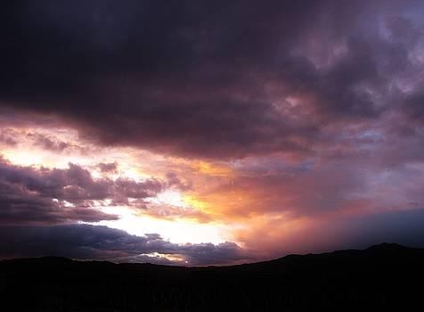 11215 Sunset by Carol Welsh