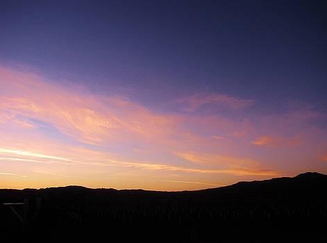 11415 Sunset by Carol Welsh