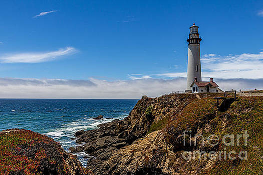115-foot Pigeon Point Lighthouse by DJ Laughlin