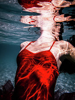 12 by Gemma Silvestre