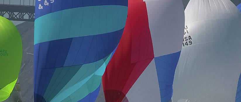 Steven Lapkin - bay colors