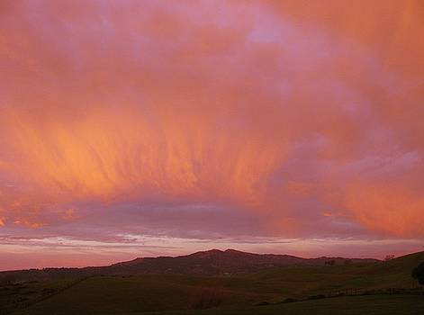 12816 Sunrise by Carol Welsh