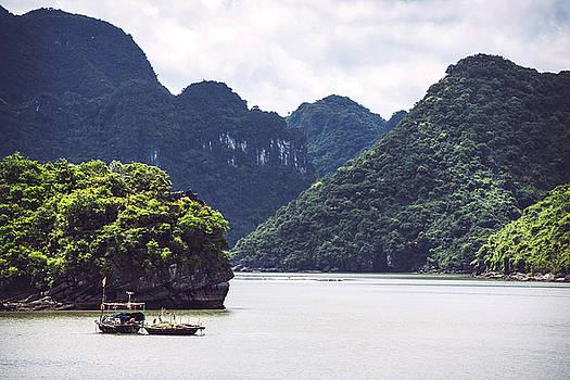 Picturesque sea landscape. Ha Long Bay, Vietnam by Eduardo Huelin