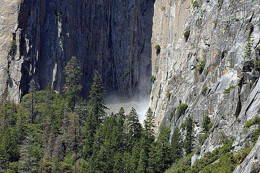 Harvey Barrison - Yosemite National Park
