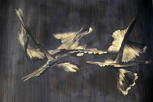 Untitled by Amit Kalla