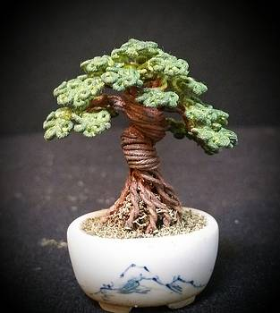 #146 Twisted Trunk Wire Tree Sculpture by Ricks Tree Art
