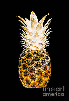 14O Artistic Glowing Pineapple Digital Art Orange by Ricardos Creations