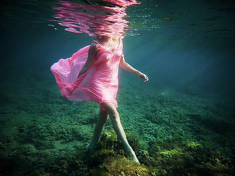 15 by Gemma Silvestre