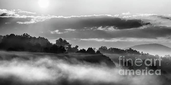 Sunrise and Fog by Thomas R Fletcher