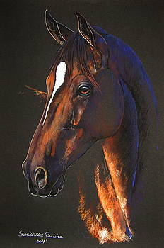 Thoroughbred horse by Paulina Stasikowska