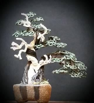 #150 Juniper with deadwood Wire Tree Sculpture by Ricks Tree Art