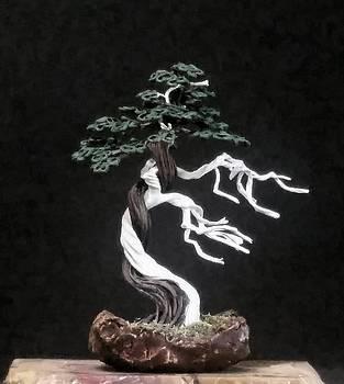 #154 Simple Bonsai Tree with deadwood by Ricks Tree Art