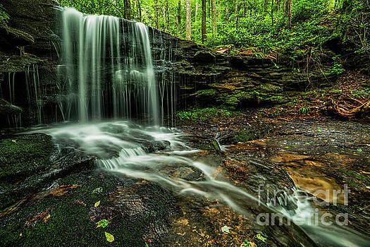 Lin Camp Branch Waterfall by Thomas R Fletcher