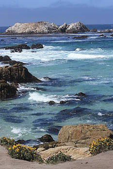 17 Mile Drive Ocean View 2 by Judy C Moses
