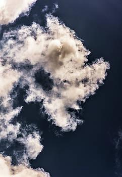 Sky Life by Steven Poulton