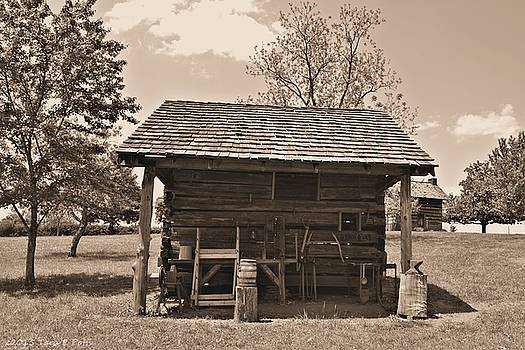 1800's Tool House by Tara Potts
