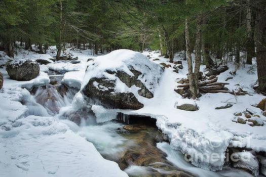 19 Mile Brook in Winter by Sharon Seaward
